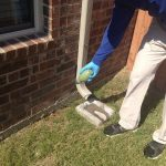 Eliminate Undesirable unwanted pests With Best Bug Control Service in Sydney